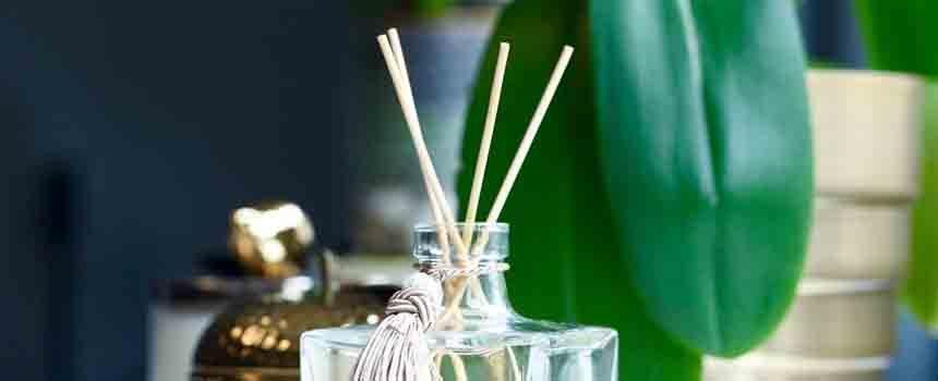 Evinizin Havasını Temizlemek İçin Yapabileceğiniz 6 Şey